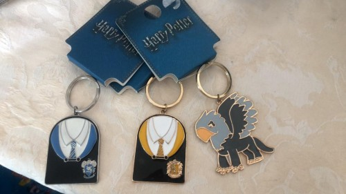 Chaveiros Harry Potter-Harry Potter-