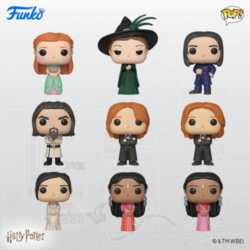 Funko Pop Set Harry Potter-Harry Potter-100